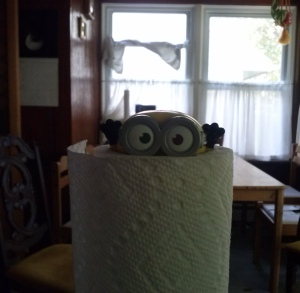 minion drowning in paper towel